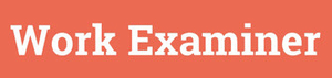 Work Examiner logo